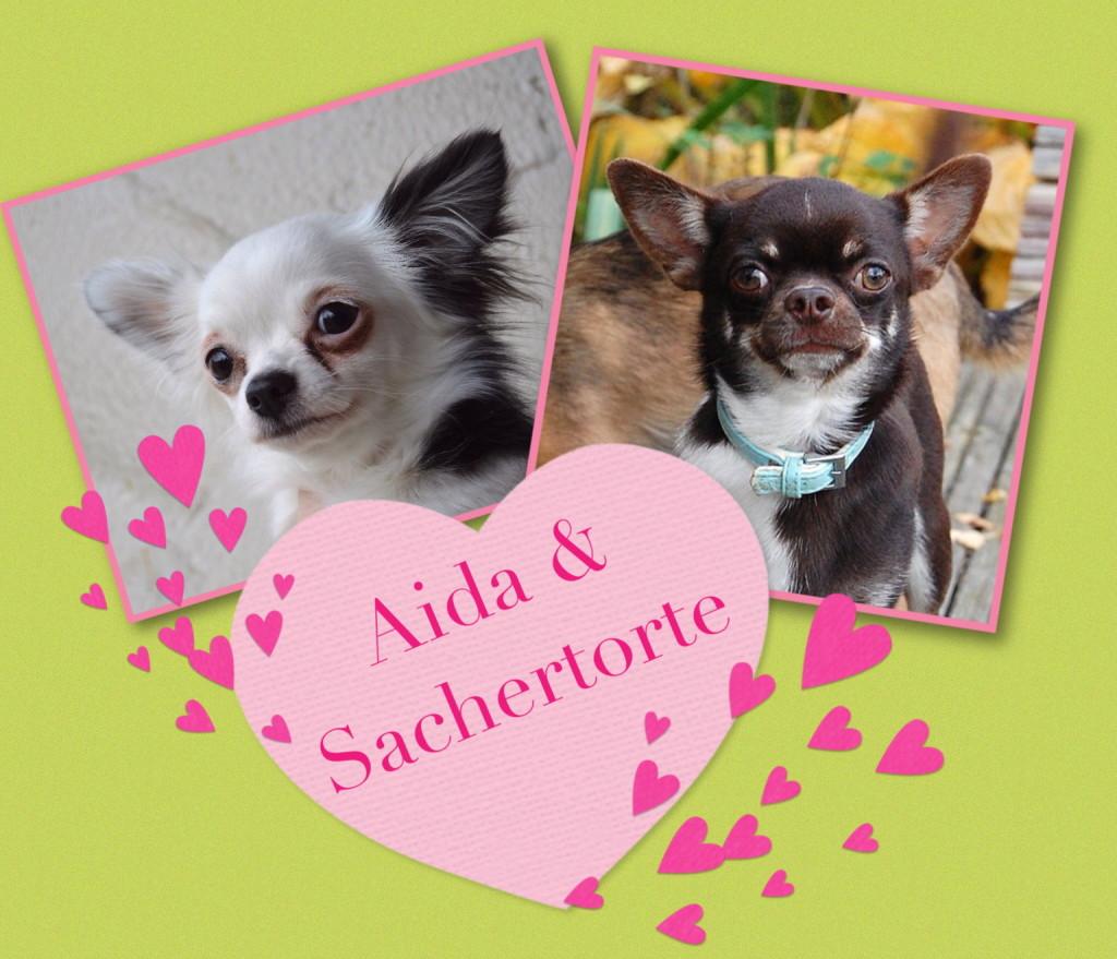 Aida&Aki